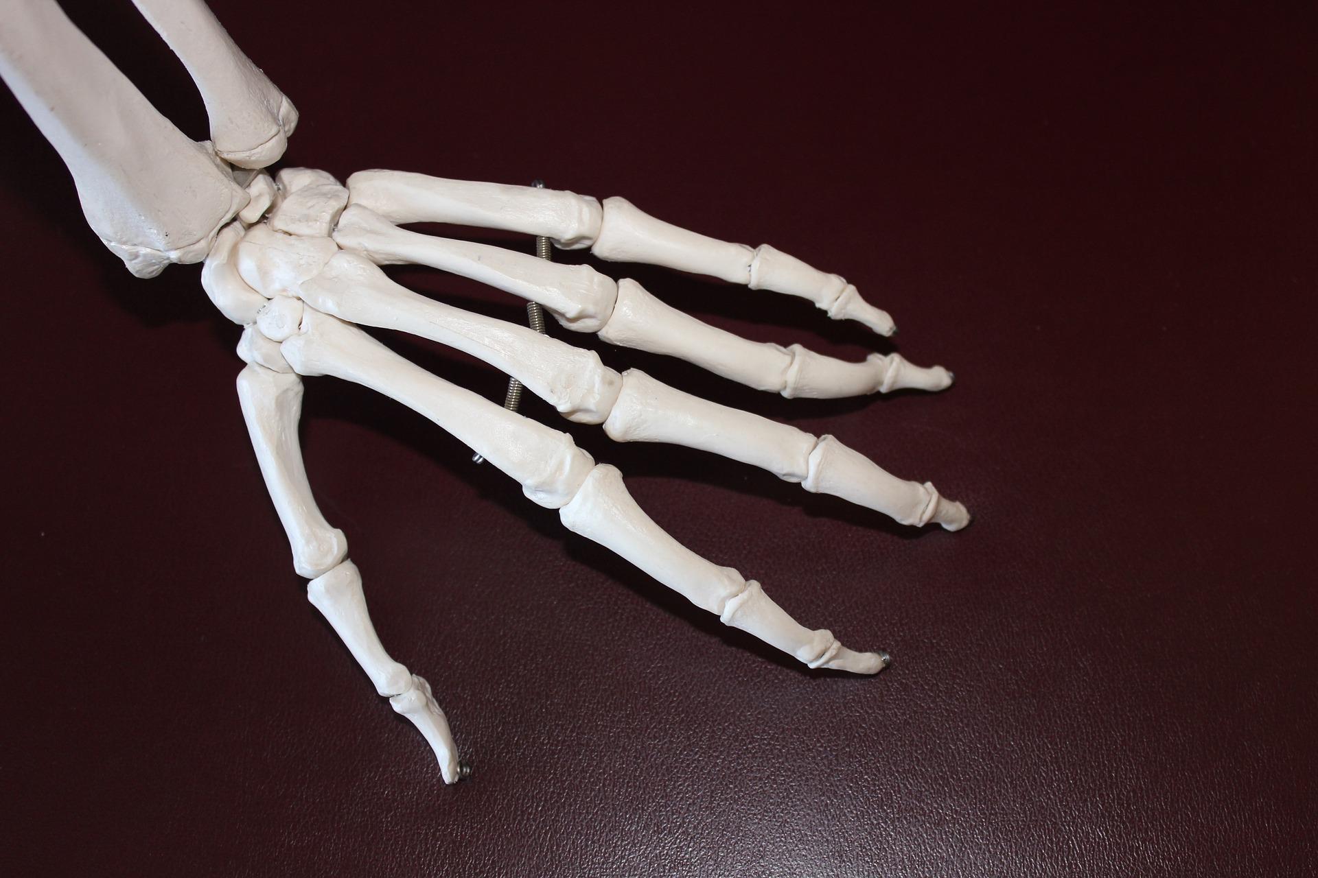 関節リウマチは放っておくと関節で腫れや痛みが生じる病気です