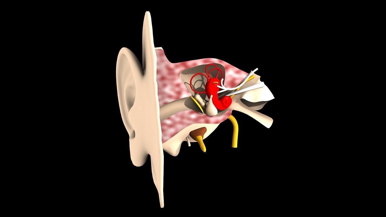 症状・疾患別受診すべき医療機関-⑫耳鼻咽喉科の症状