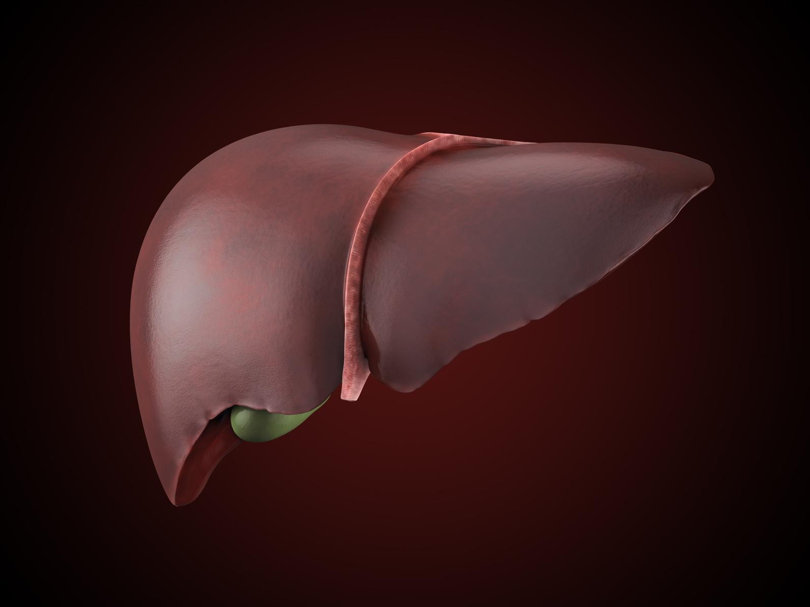肝臓がんの原因と症状 沈黙の臓器と言われる所以は?