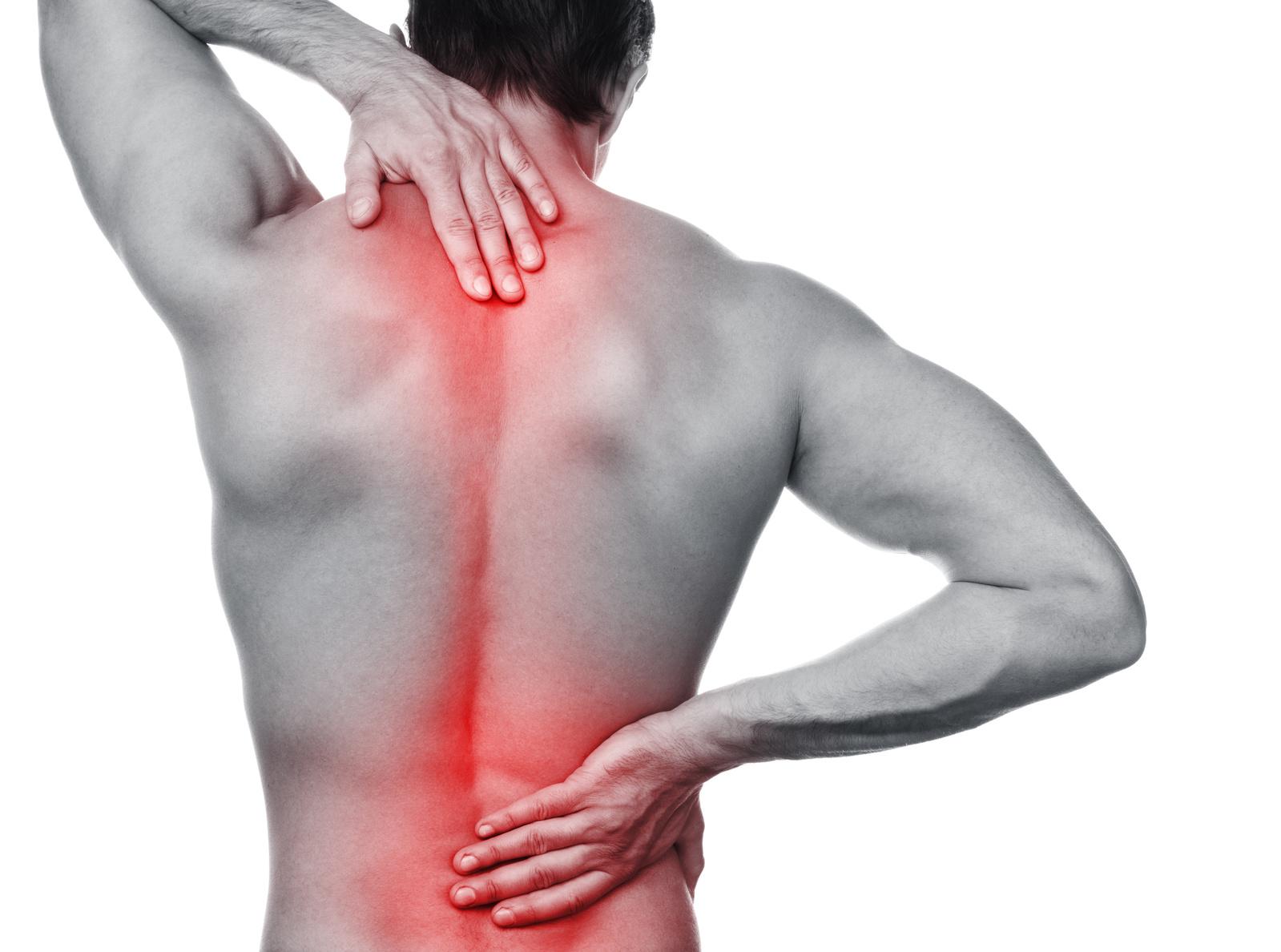 背中が痛いのは、肩こりだけじゃなくて内臓に異常がある場合が…