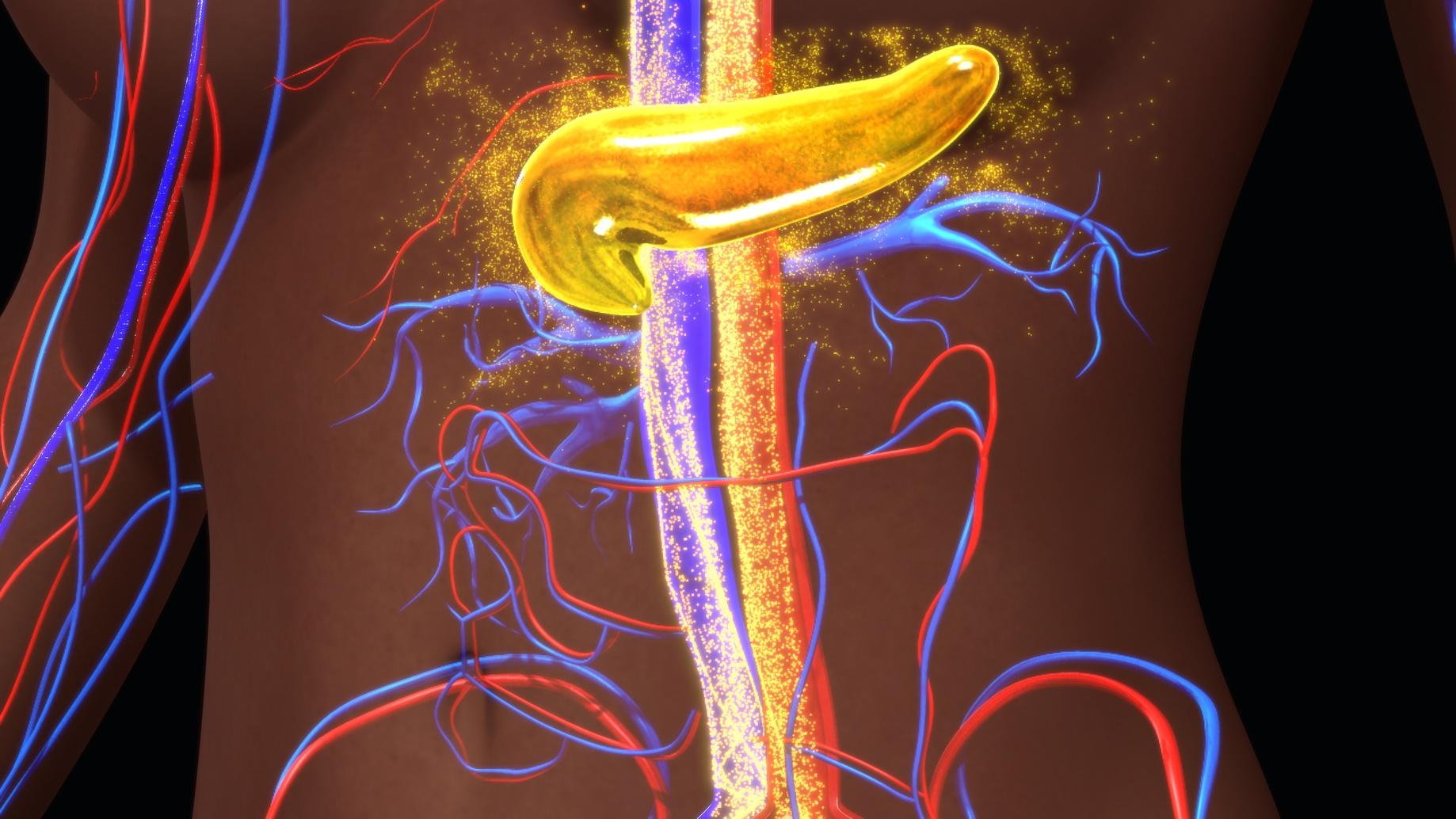 膵臓がんの外科的治療では、手術件数が多い名医ほど治療経過が良い!【米国論文】